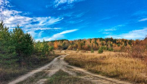 Прогулки с гидом по окрестностям